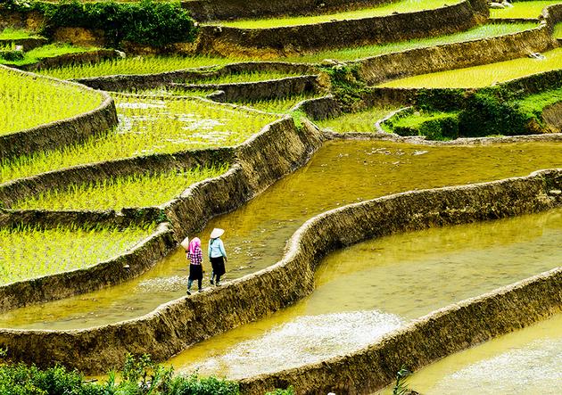 2018中国农村贫困人口_河南2018年将实现110万农村贫困人口脱贫