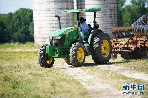 """美国豆农的焦虑:""""不能在一个月之内完成播种"""