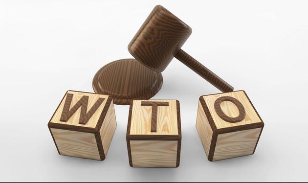 """日韩WTO""""吵架"""",美国为何凑热闹?韩:不应破坏WTO维持的秩序   _中欧新闻_欧洲中文网"""