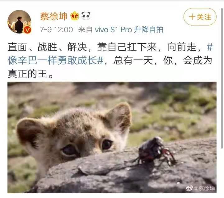 """蔡徐坤""""助攻""""狮子王 迪士尼的""""算盘""""打对了吗?"""