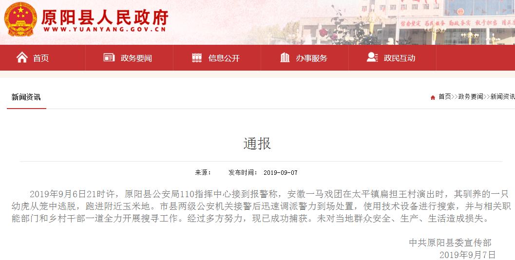 马戏团幼虎出逃玉米地 河南原阳县警方:已捕获