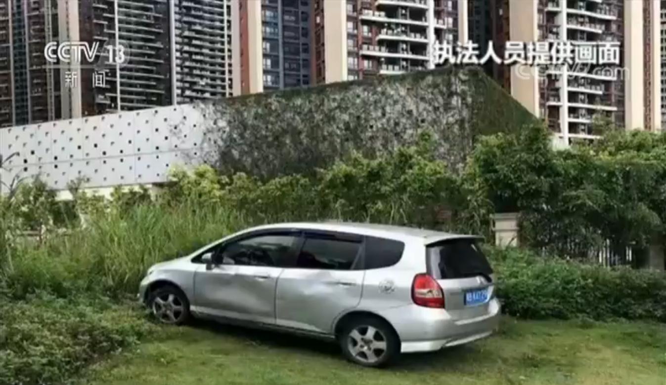 深圳一车主汽车停上绿化带 3小时被罚3230元