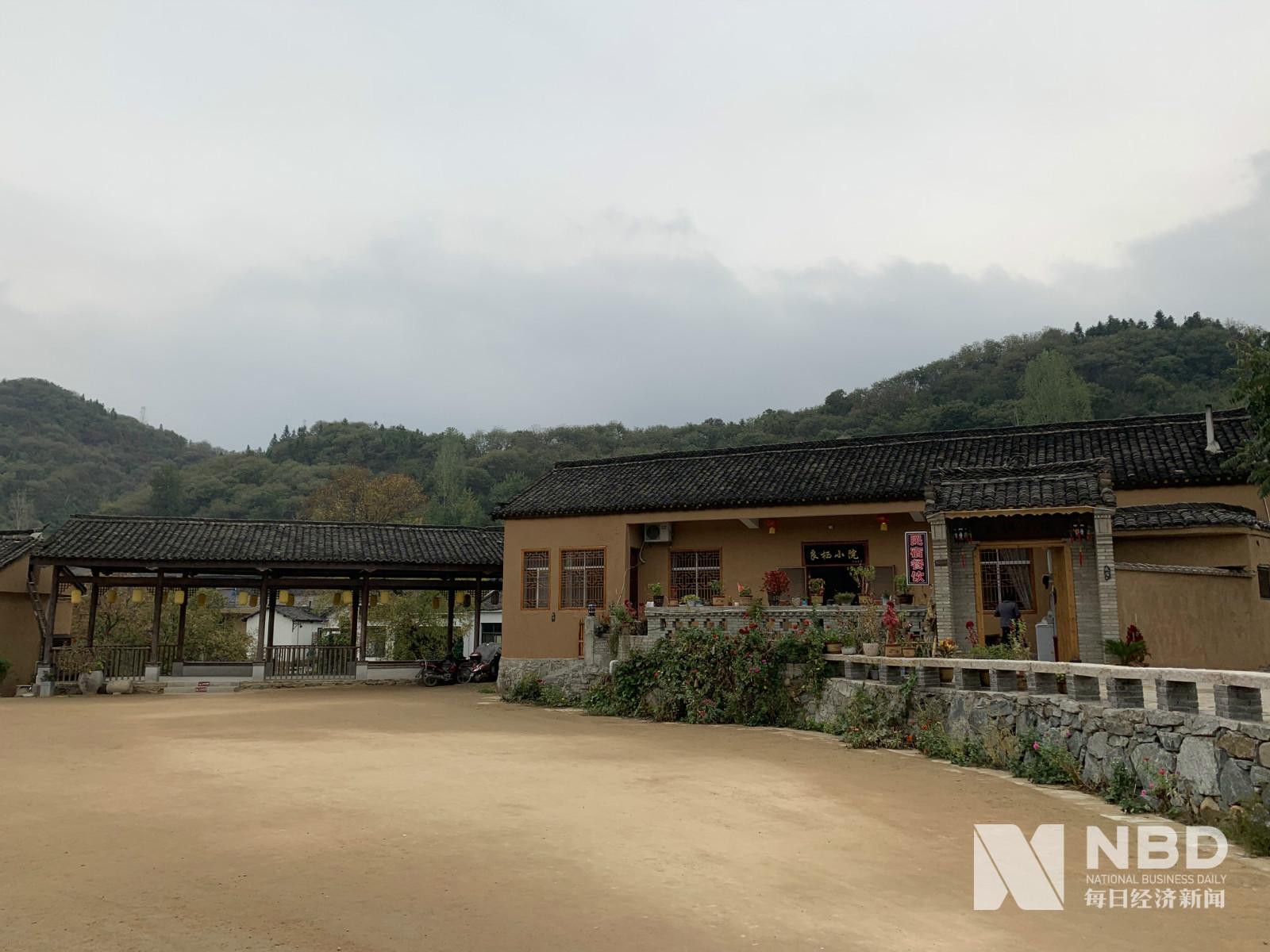 河南新县的生态致富样本:种有机