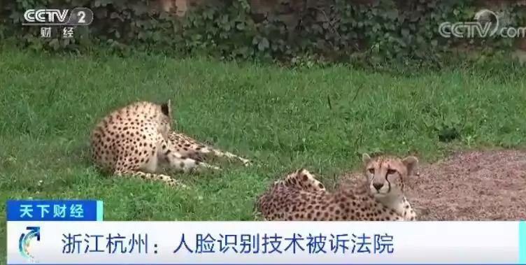 """杭州野生动物世界,因为人脸识别被告上了法庭!""""人脸识别第一案"""",能否破开监管""""坚冰""""?(图4)"""