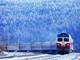 20120719_40538.thumb_hs