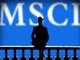 Msci_2.thumb_hs