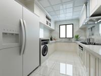 冰洗市场高端化趋势显现、新品爆发 成家电零售第二大增长体系