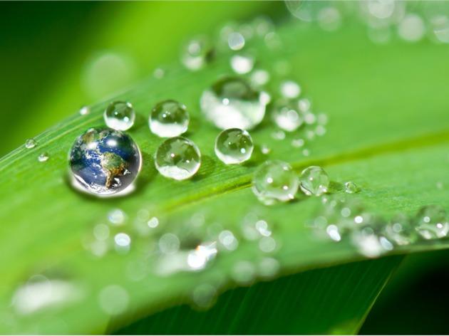 环保部门将发布守法标杆企业名单